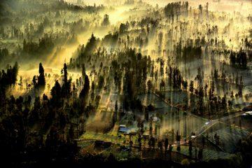Kabut Pagi di Gunung Bromo